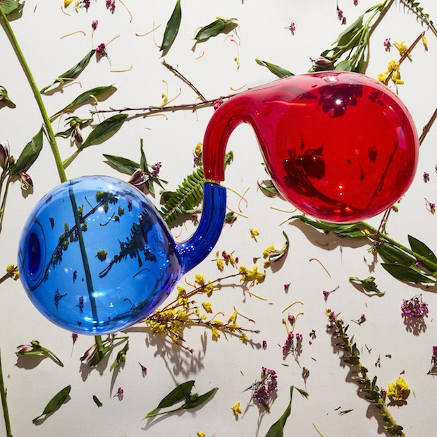 dirty projectors nuevo disco lamp lit prose